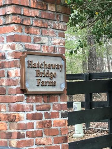 Lot 5a Rocking Horse Lane, AIKEN, SC 29801 (MLS #100129) :: Shannon Rollings Real Estate