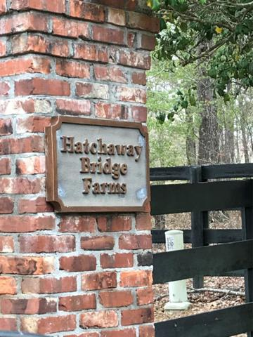 Lot 5b Rocking Horse Lane, AIKEN, SC 29801 (MLS #100130) :: Shannon Rollings Real Estate