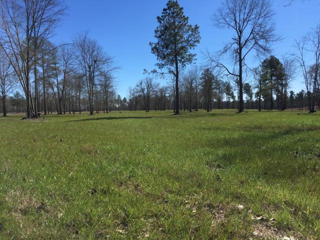 lot 6 Parque Lane, AIKEN, SC 29803 (MLS #102445) :: Shannon Rollings Real Estate