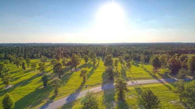 Lot 48 Bayboro Circle, AIKEN, SC 29803 (MLS #102914) :: Shannon Rollings Real Estate