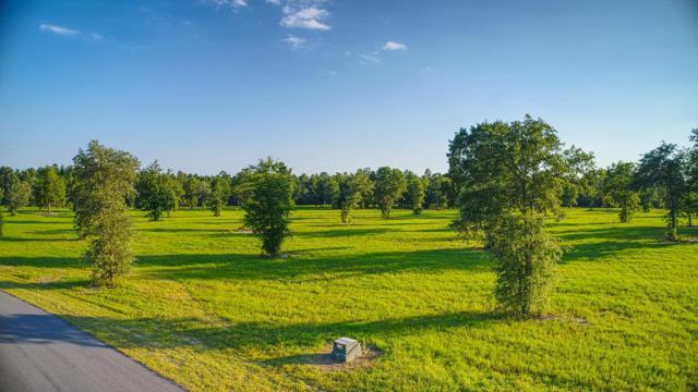 Lot 39 Bayboro Circle, AIKEN, SC 29803 (MLS #102917) :: Shannon Rollings Real Estate