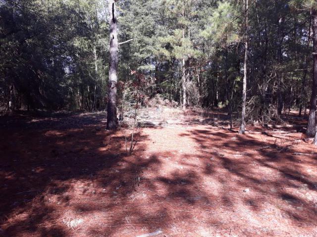 5 Cricket Tree Rd, SALLEY, SC 29137 (MLS #103583) :: Shannon Rollings Real Estate