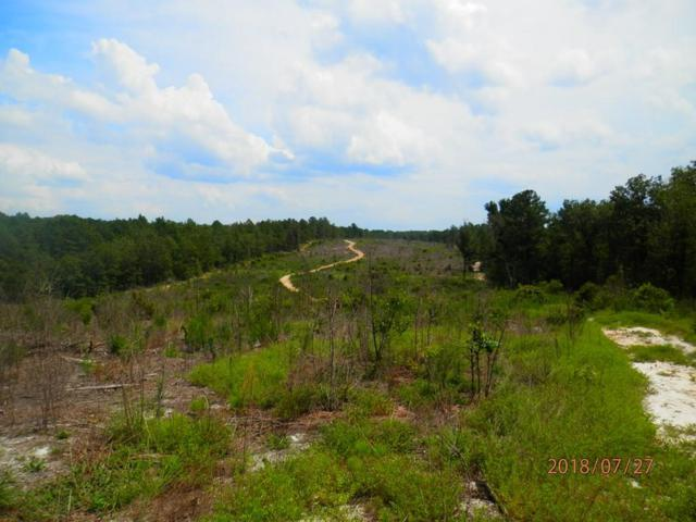 2480 Camp Rawls Rd, WAGENER, SC 29164 (MLS #103787) :: Greg Oldham Homes