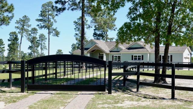 951 Shell Bluff Drive, AIKEN, SC 29803 (MLS #104052) :: Fabulous Aiken Homes & Lake Murray Premier Properties