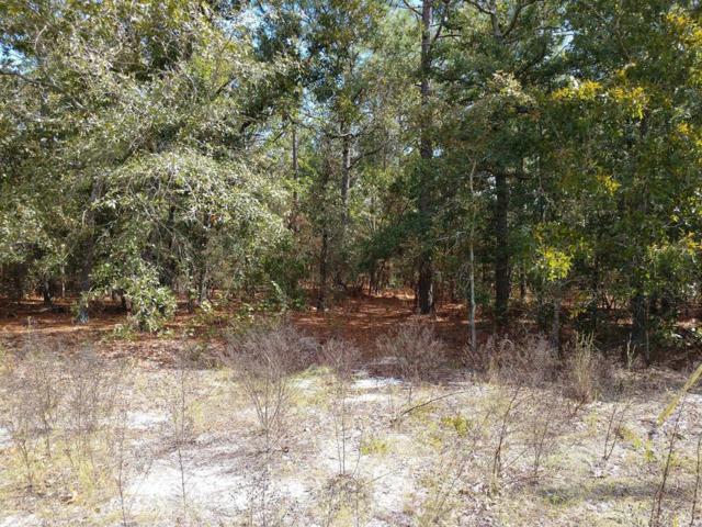 51 Green Oak Dr, AIKEN, SC 29801 (MLS #104878) :: RE/MAX River Realty