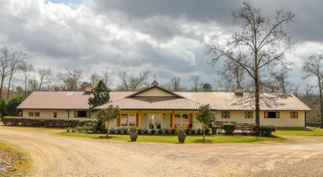 480 Paloma Lane, AIKEN, SC 29805 (MLS #106981) :: Fabulous Aiken Homes & Lake Murray Premier Properties