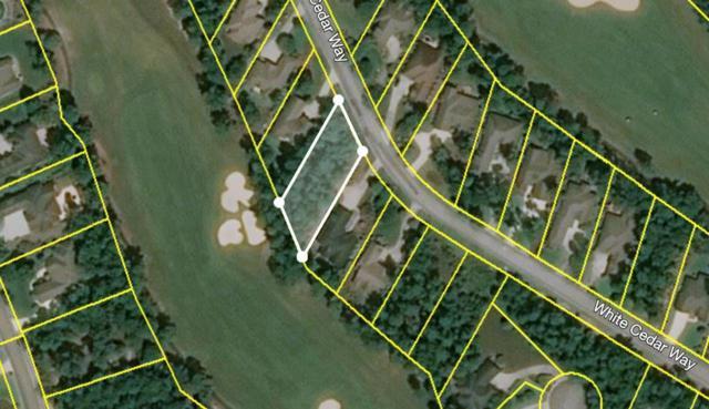 219 White Cedar Way, AIKEN, SC 29803 (MLS #108346) :: Venus Morris Griffin | Meybohm Real Estate