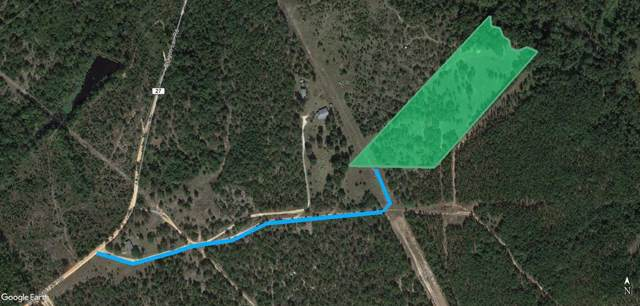 000 Dragon Lair Road, TRENTON, SC 29847 (MLS #109951) :: Shannon Rollings Real Estate