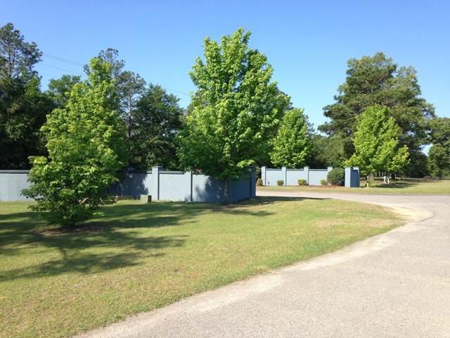 272 Lot  #46 Equestrian Way, AIKEN, SC 29803 (MLS #110443) :: Shannon Rollings Real Estate