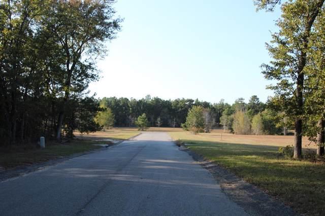 272 Lot  #48 Equestrian Way, AIKEN, SC 29803 (MLS #110445) :: Shannon Rollings Real Estate