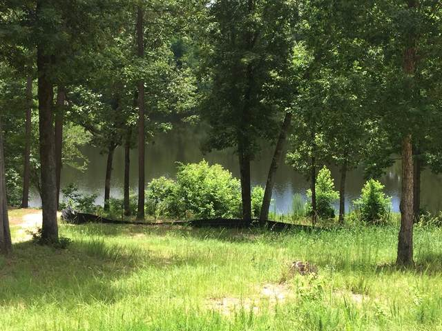 273 Hodges Bay Drive, AIKEN, SC 29803 (MLS #112494) :: RE/MAX River Realty