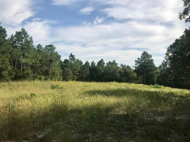 LOT#13  197 Holder Road, BATESBURG, SC 29006 (MLS #113533) :: Shannon Rollings Real Estate