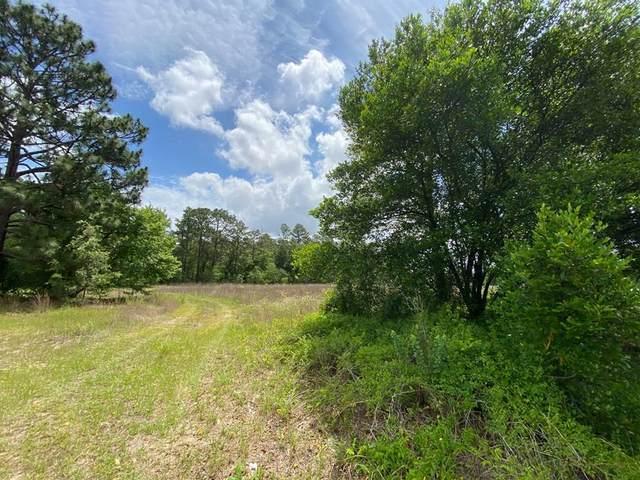 4529 11.92ac Charleston Hwy, WINDSOR, SC 29856 (MLS #117621) :: RE/MAX River Realty