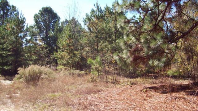0000 Deerfield Road, WINDSOR, SC 29856 (MLS #58806) :: Shannon Rollings Real Estate