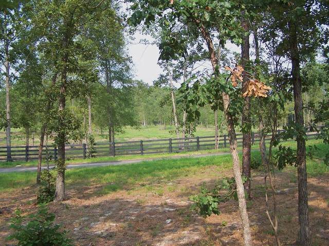 000 Solstice Meadow Lane, AIKEN, SC 29803 (MLS #96561) :: Shaw & Scelsi Partners