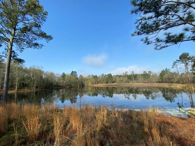 48 Acres Old Kimbill Trail, AIKEN, SC 29805 (MLS #114867) :: RE/MAX River Realty