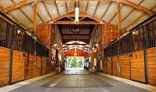 900 Horse Creek Road, BEECH ISLAND, SC 29842 (MLS #110202) :: RE/MAX River Realty