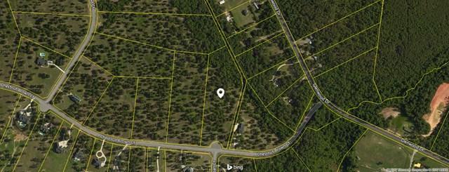 Lot 5 Chestnut Brown Ct, WARRENVILLE, SC 29851 (MLS #100000) :: Shannon Rollings Real Estate
