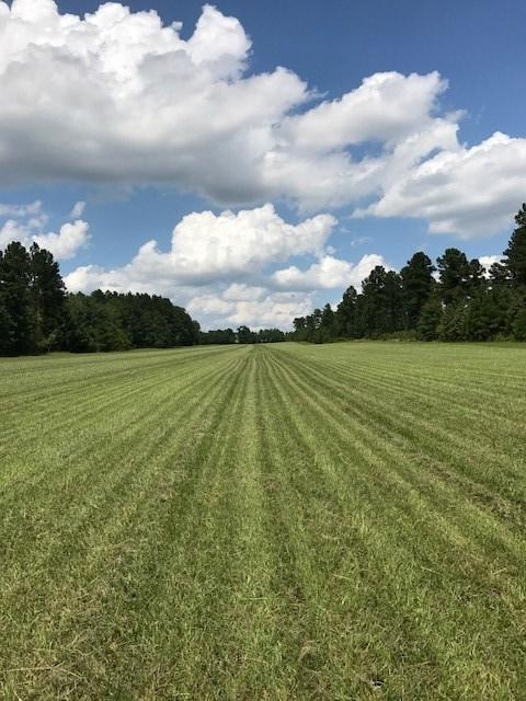Lot P-2 Wexford Mill Drive, WAGENER, SC 29164 (MLS #100188) :: Shannon Rollings Real Estate