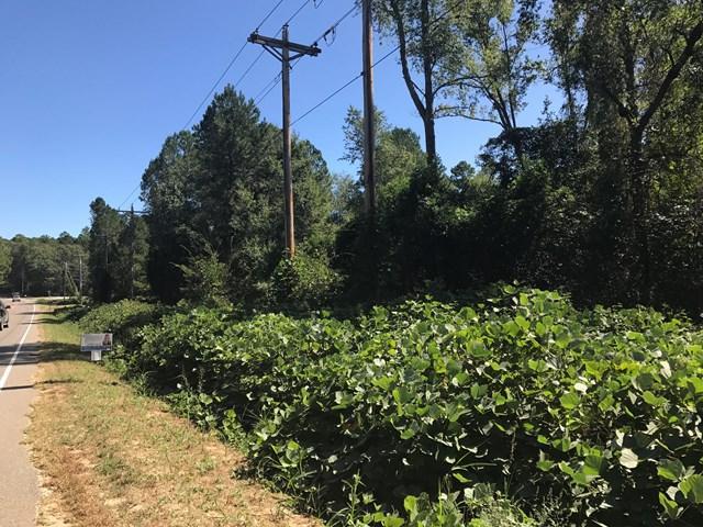 Lot 83 Pine Log Road, WARRENVILLE, SC 29851 (MLS #100288) :: Shannon Rollings Real Estate