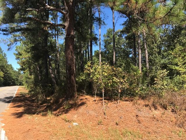 Lot 000 Pine Log Rd & Pine Street, WARRENVILLE, SC 29851 (MLS #100289) :: Shannon Rollings Real Estate