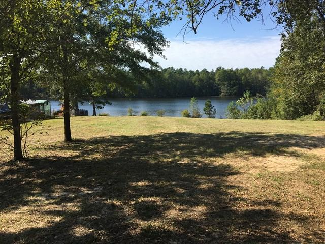 387 Wexford Mill Drive, WAGENER, SC 29164 (MLS #100323) :: Shannon Rollings Real Estate