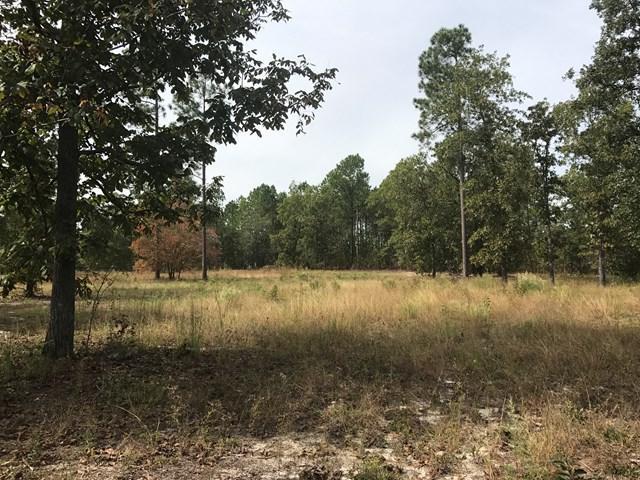 Lot 3 Quarry Pass, AIKEN, SC 29803 (MLS #100604) :: Shannon Rollings Real Estate