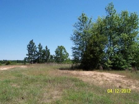 00 Edgefield Hwy., AIKEN, SC 29801 (MLS #100640) :: Shannon Rollings Real Estate