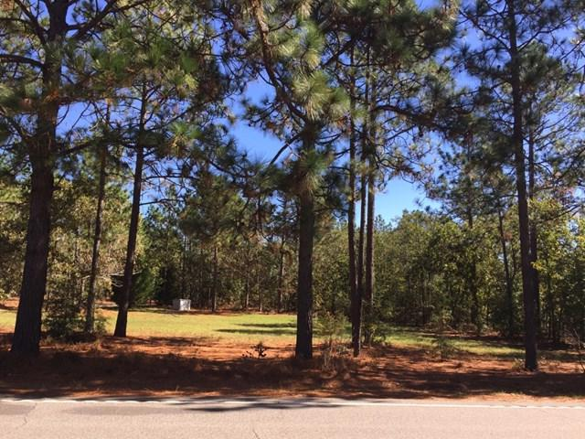 0 State Park Road, WINDSOR, SC 29856 (MLS #100685) :: Shannon Rollings Real Estate