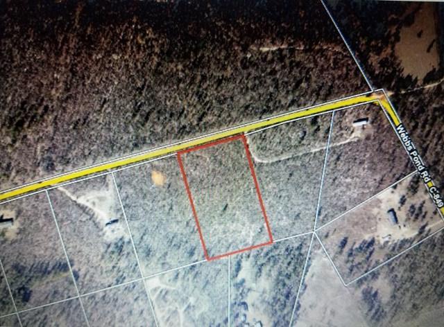 409 Webbs Pond Road, WILLISTON, SC 29853 (MLS #100705) :: Shannon Rollings Real Estate