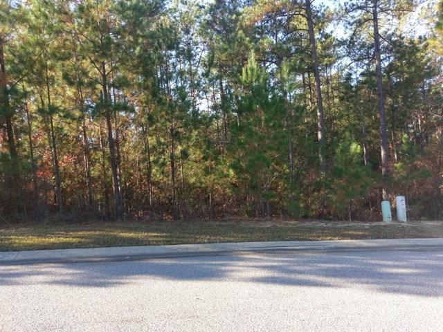 209 Birch Tree Circle, AIKEN, SC 29803 (MLS #101024) :: Shannon Rollings Real Estate