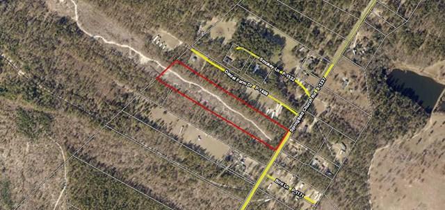 0 Springfield Church Road, TRENTON, SC 29847 (MLS #101065) :: Shannon Rollings Real Estate