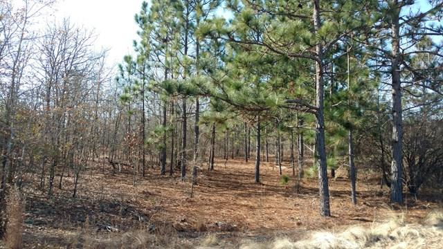Tract D Centerwood, WILLISTON, SC 29853 (MLS #101182) :: Shannon Rollings Real Estate
