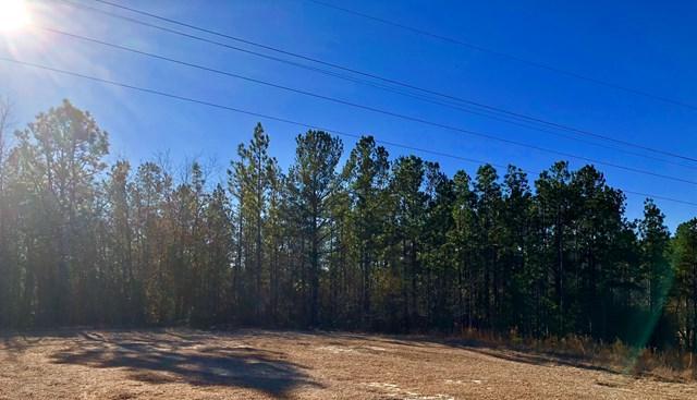 0 Pickett Ln, AIKEN, SC 29803 (MLS #101347) :: Shannon Rollings Real Estate
