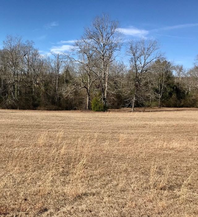 Lot 1 Holiness Church Road, WAGENER, SC 29805 (MLS #101506) :: Shannon Rollings Real Estate