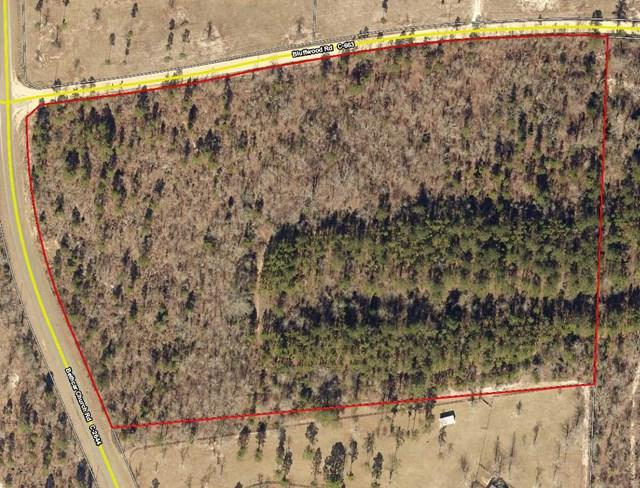 14.61 ac Bethcar Church & Bluffwood, WAGENER, SC 29164 (MLS #101567) :: Shannon Rollings Real Estate