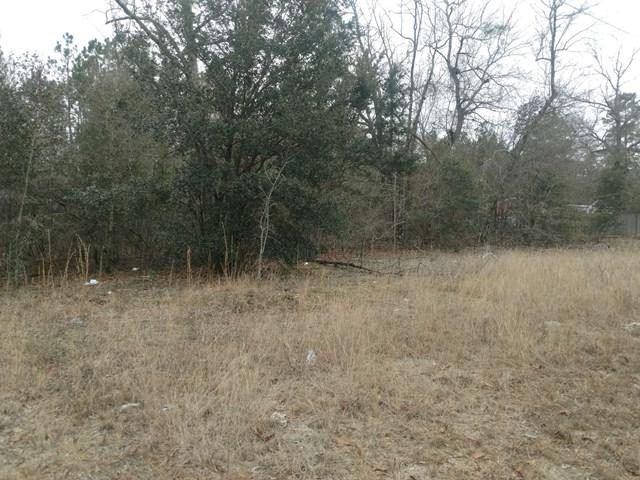 Lot 19 Emily Circle, BARNWELL, SC 29812 (MLS #101606) :: Shannon Rollings Real Estate