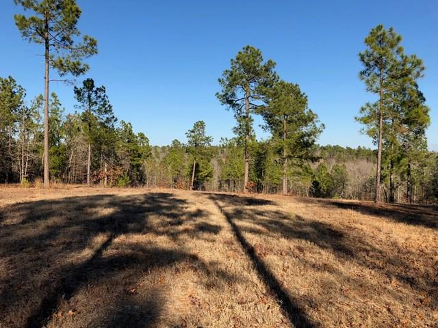 Lot 11 Phase 3A Quarry Pass, AIKEN, SC 29803 (MLS #101620) :: Shannon Rollings Real Estate