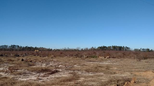 22 ac Old Kimbill Trail, AIKEN, SC 29805 (MLS #101624) :: Shannon Rollings Real Estate