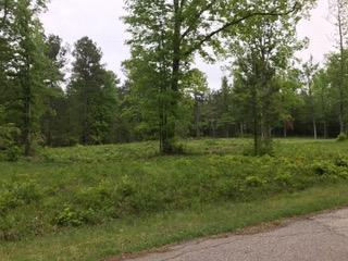 02 Woodridge Rd, EDGEFIELD, SC 29824 (MLS #102502) :: Shannon Rollings Real Estate