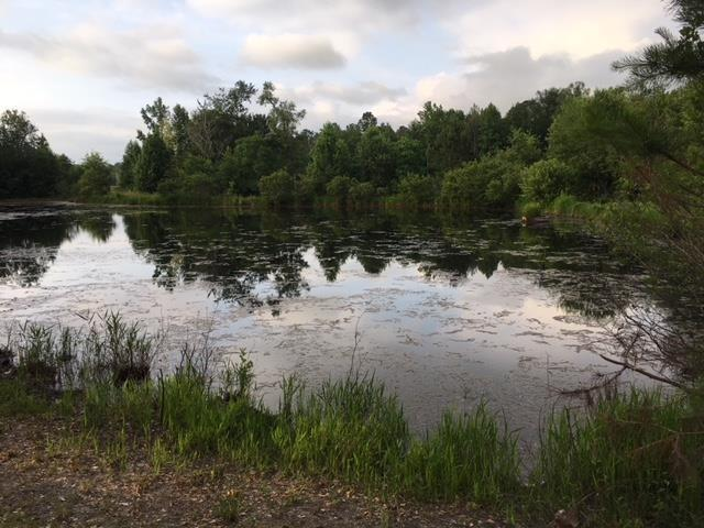 640 Summer Lakes Drive, AIKEN, SC 29805 (MLS #103216) :: Shannon Rollings Real Estate