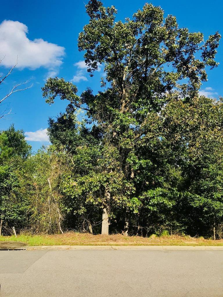 155 Foxhound Run Road - Photo 1