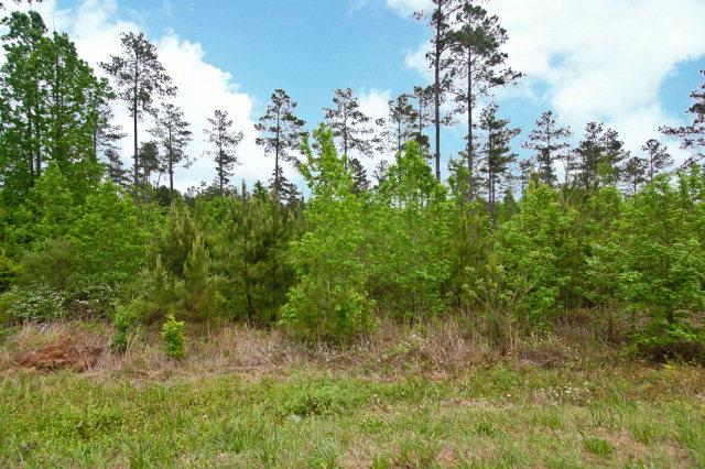Lot 0 Sweetwater Road, EDGEFIELD, SC 29824 (MLS #104873) :: Venus Morris Griffin | Meybohm Real Estate