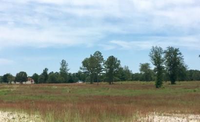 Parcel B122 Pearl Lane, WILLISTON, SC 29853 (MLS #104924) :: Shannon Rollings Real Estate