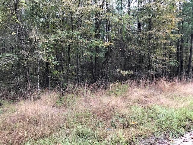 0000 Highway 25, EDGEFIELD, SC 29824 (MLS #104945) :: RE/MAX River Realty