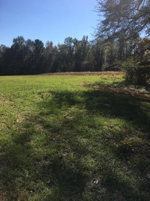 0000 Shadow Lane Road, WAGENER, SC 29164 (MLS #104965) :: Greg Oldham Homes