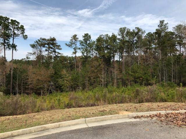 305 Steeple Ridge Rd, AIKEN, SC 29803 (MLS #105331) :: Venus Morris Griffin   Meybohm Real Estate