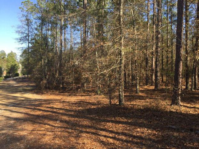 164 East Pleasant Colony, AIKEN, SC 29803 (MLS #106624) :: RE/MAX River Realty