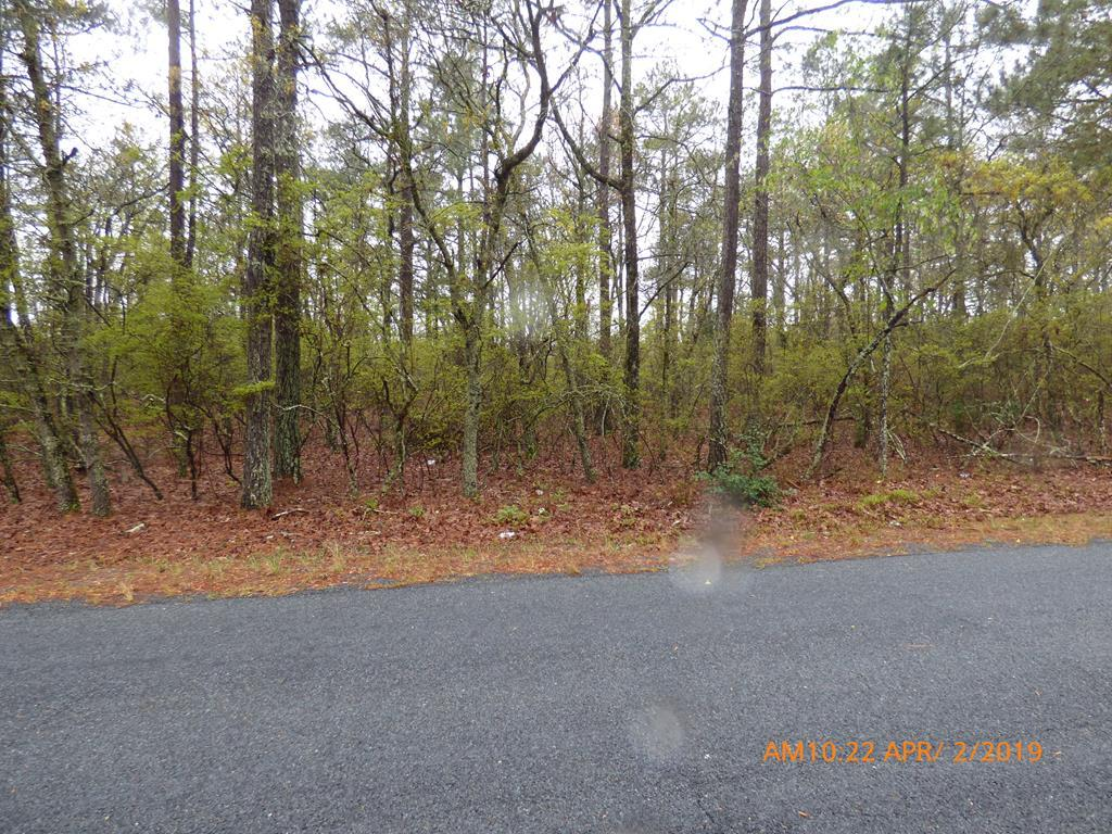 00 Old Shoals Road - Photo 1