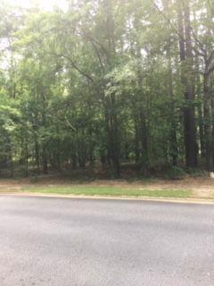 Lot 4B Long Shadow Drive, AIKEN, SC 29803 (MLS #107762) :: Meybohm Real Estate